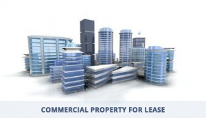 Choose Commercial Property for Lease